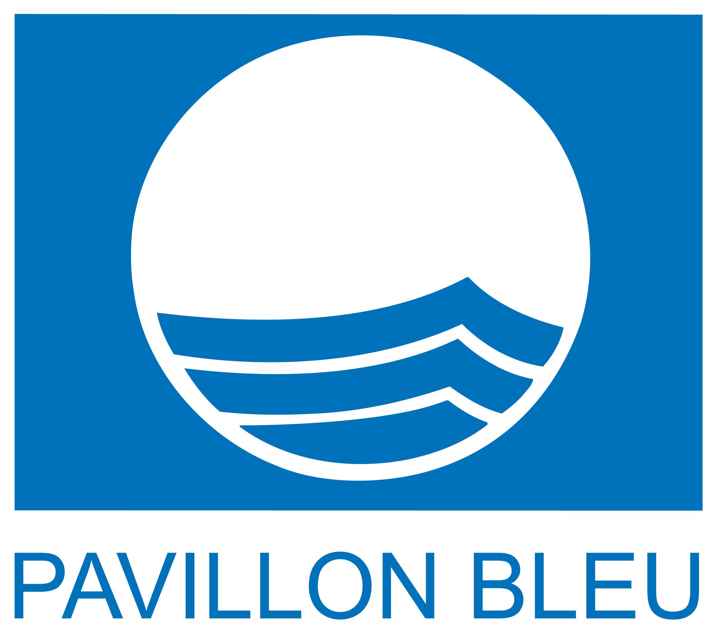 blue flag cmyk baseline